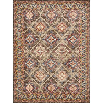 Nathanson Dark Brown Area Rug Rug Size: 9 x 12