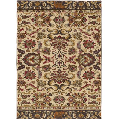 Barnett Multi Area Rug Rug Size: Rectangle 53 x 73