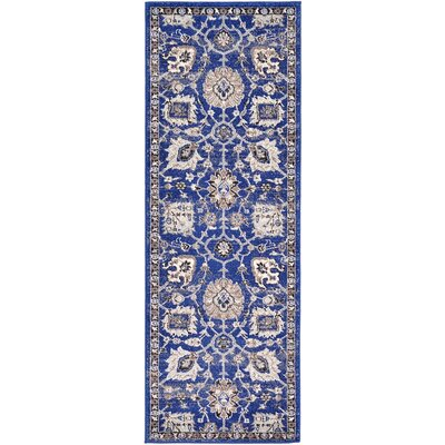 Drumsill Blue Area Rug Rug Size: Runner 2'2