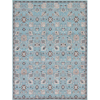 Kempf Light Blue Area Rug Rug Size: Rectangle 9 x 12