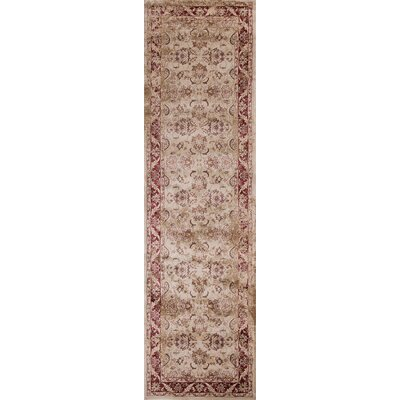 Bailor Ivory/Red Area Rug Rug Size: Runner 23 x 711