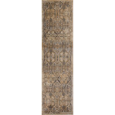 Bailor Ivory/Gray Area Rug Rug Size: Runner 2'3