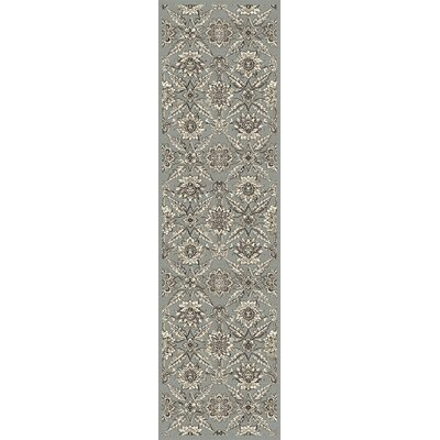 Palmilla Silver Area Rug Rug Size: Runner 22 x 710