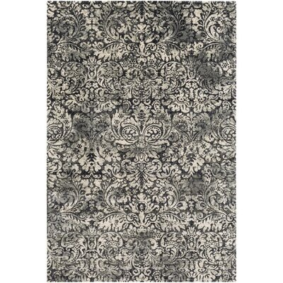 Champlin Gray/Black Area Rug Rug Size: Rectangle 51 x 76