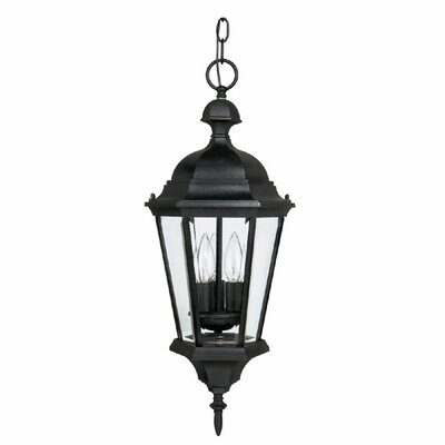Barham 3-Light Outdoor Hanging Lantern