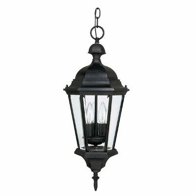 Barham 3-Light Outdoor Hanging Lantern