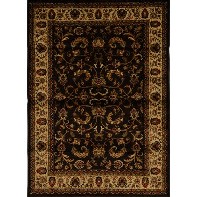Caterina Brown Area Rug Rug Size: 52 x 72
