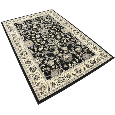 Essehoul Black Area Rug Rug Size: Rectangle 4 x 6