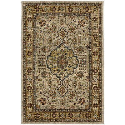 Medici Silver/Gold Area Rug Rug Size: Rectangle 8 x 11