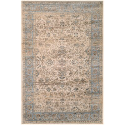 Cotswolds Light Blue/Oatmeal Area Rug Rug Size: 92 x 125