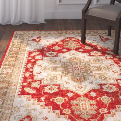 Aylor Red/Orange Area Rug Rug Size: Rectangle 76 x 96