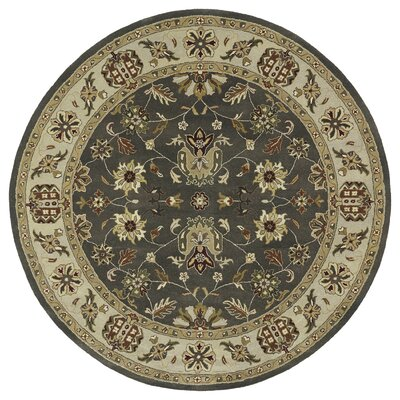 Plaistow Light Green Area Rug Rug Size: Round 9'9