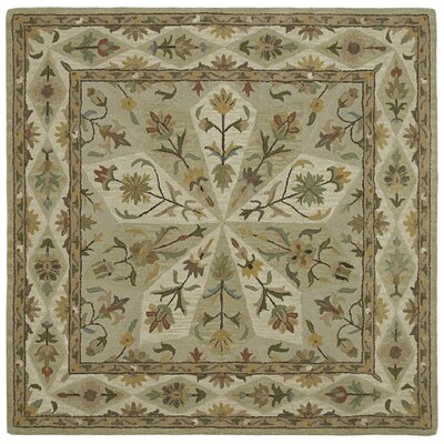 Quance Sage Area Rug Rug Size: Square 39