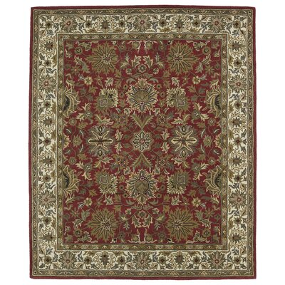Barkell Red Area Rug Rug Size: Rectangle 8 x 11