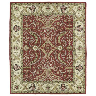 Barkell Red Area Rug Rug Size: Rectangle 76 x 9