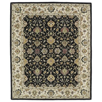 Barkell Black/Ivory Area Rug Rug Size: Rectangle 76 x 9