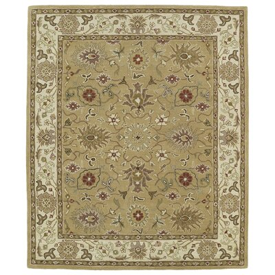 Barkell Tan Area Rug Rug Size: Rectangle 5 x 79