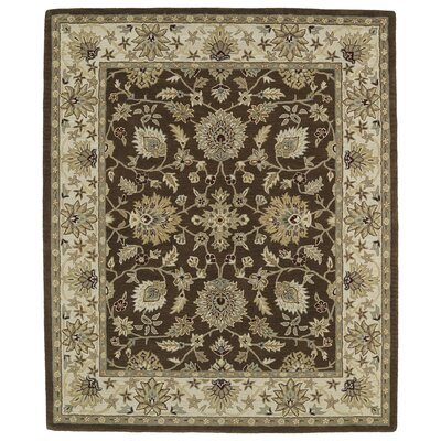 Barkell Area Rug Rug Size: Rectangle 8 x 11