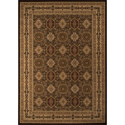 Mira Monte Brown Area Rug Rug Size: Rectangle 53 x 77