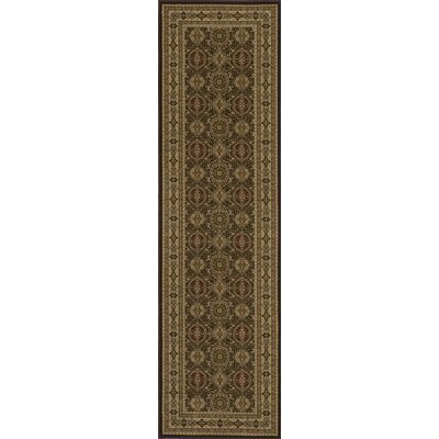 Mira Monte Brown Area Rug Rug Size: Runner 2'3