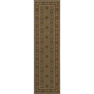Mira Monte Slate Area Rug Rug Size: Runner 23 x 710