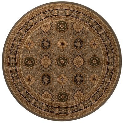 Mira Monte Slate Area Rug Rug Size: Round 710