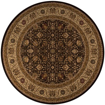Mira Monte Brown Area Rug Rug Size: Rectangle 113 x 15