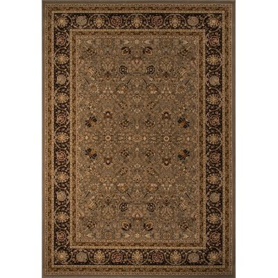 Mira Monte Brown Area Rug Rug Size: 710 x 1010