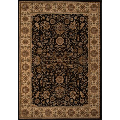 Mira Monte Black/Brown Area Rug Rug Size: 910 x 136