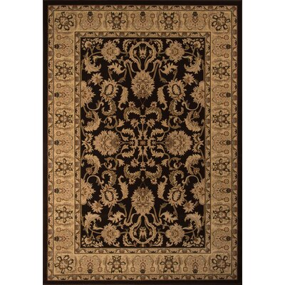 Mira Monte Brown Area Rug Rug Size: Rectangle 33 x 5
