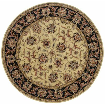 Vinoy Hand-made Ivory/Black Area Rug Rug Size: Rectangle 96 x 136