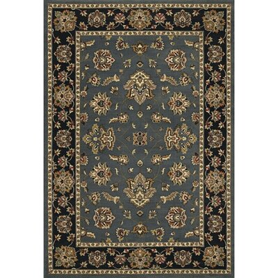 Shelburne Floral Blue/Black Area Rug Rug Size: Rectangle 4 x 6
