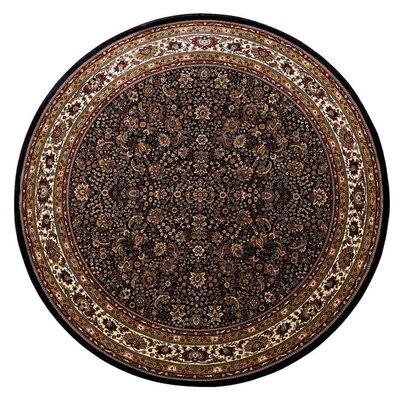 Shelburne Traditional Black/Ivory Area Rug Rug Size: Round 6