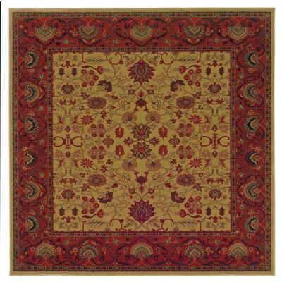 Cipriani Tabriz/Harvest Gold Area Rug Rug Size: Square 311