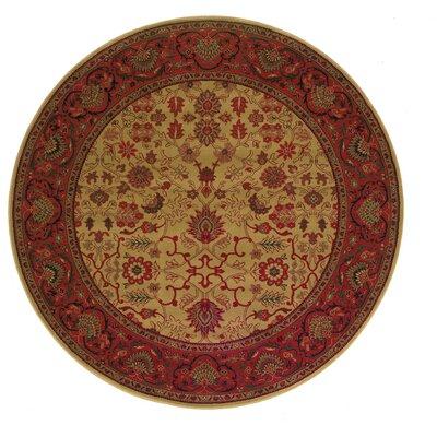 Cipriani Tabriz/Harvest Gold Area Rug Rug Size: Round 53
