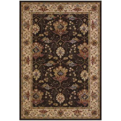 Cipriani Chocolate Area Rug Rug Size: Runner 27 x 710