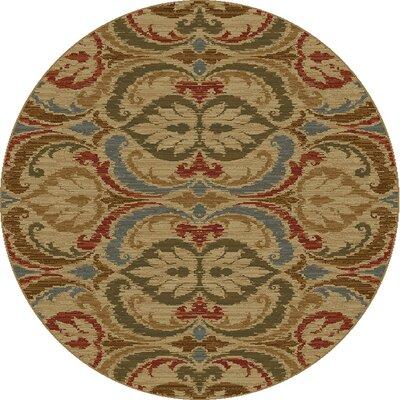 Ikin Gold Firenze Area Rug Rug Size: Round 53