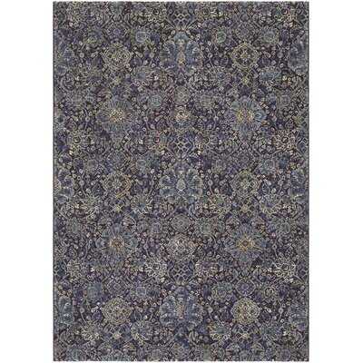 Meadville Navy/Sapphire Area Rug Rug Size: Rectangle 53 x 76