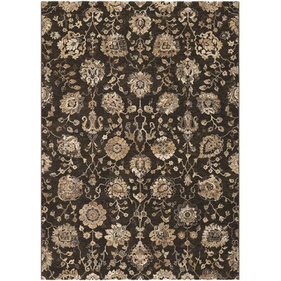 Meadville Espresso/Cream Area Rug Rug Size: Rectangle 92 x 125