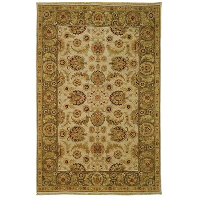 Belfield Ivory / Green Oriental Rug Rug Size: Rectangle 9 x 12