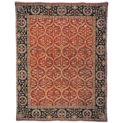 Belfield Amritsan Red Rug Rug Size: Rectangle 9 x 12