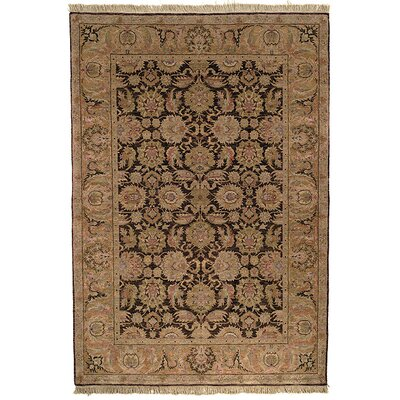 Belfield Dark Brown/Gold Area Rug Rug Size: 6 x 9