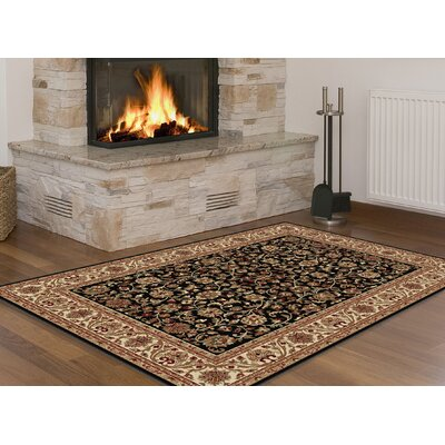 Clarence Black/Brown Area Rug Rug Size: Rectangle 2 x 3