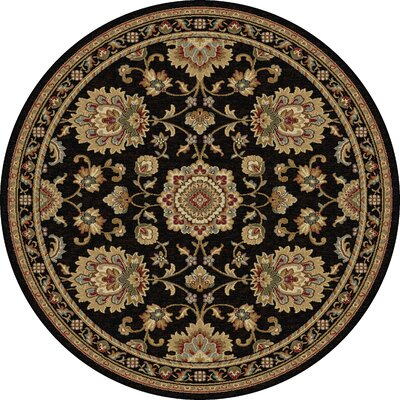 Clarence Black/Gold Area Rug Rug Size: Round 53