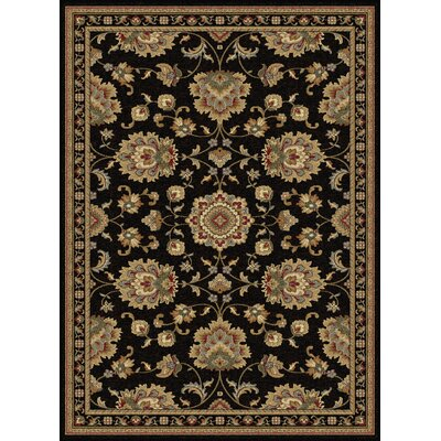 Clarence Black/Gold Area Rug Rug Size: 53 x 73