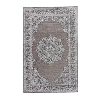 Melandra Gray Area Rug Rug Size: Rectangle 5 x 76