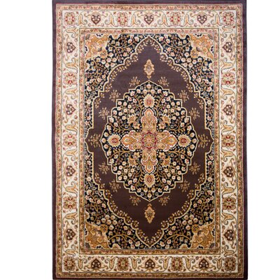 Caterina Brown Area Rug Rug Size: 5'2