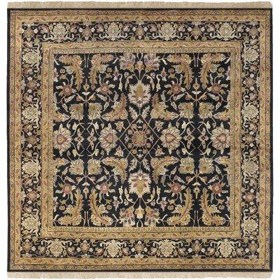 Barlett Black/Tan Rug Rug Size: Square 8