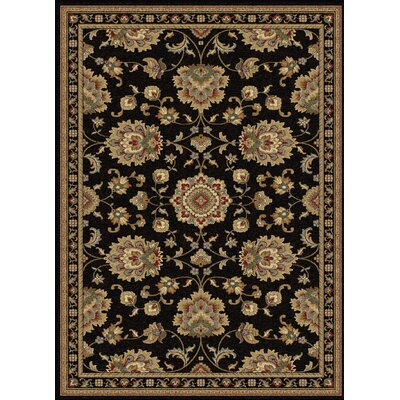 Clarence Black/Gold Area Rug Rug Size: Rectangle 11 x 15