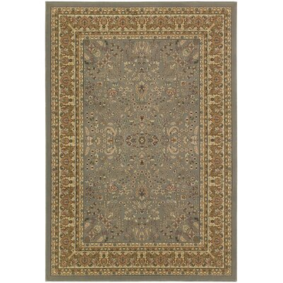 Belcourt Floral Gray Area Rug Rug Size: Rectangle 53 x 76